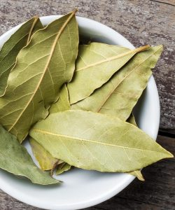 non-feat-bay-leaves-explainer